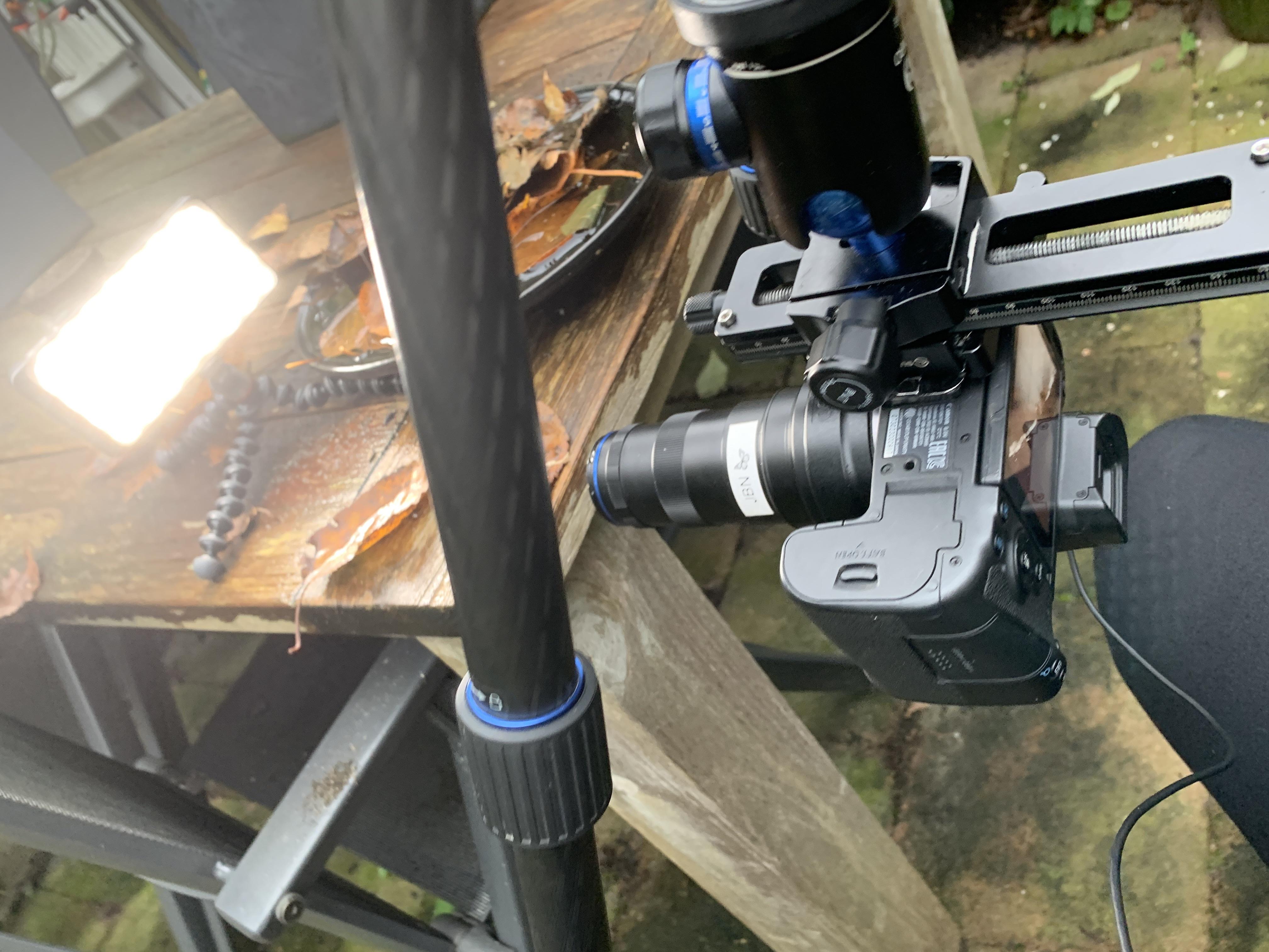Springstaartje fotograferen met Sunwayfoto FL-120