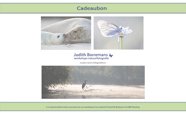 Cadeaubon JBN