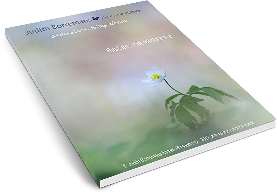 Ebook Basistips Macrofotografie Judith Borremans.