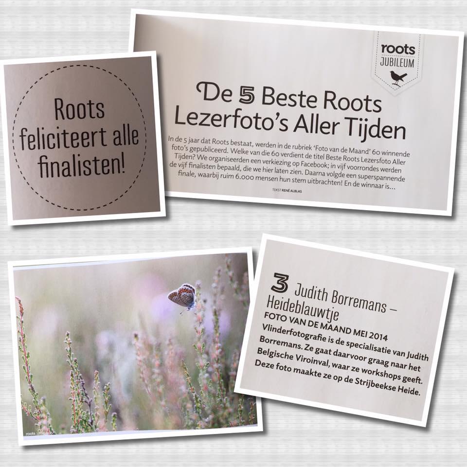 31-08-2016 3e Prijs In Roots Wedstrijd Beste Lezersfoto