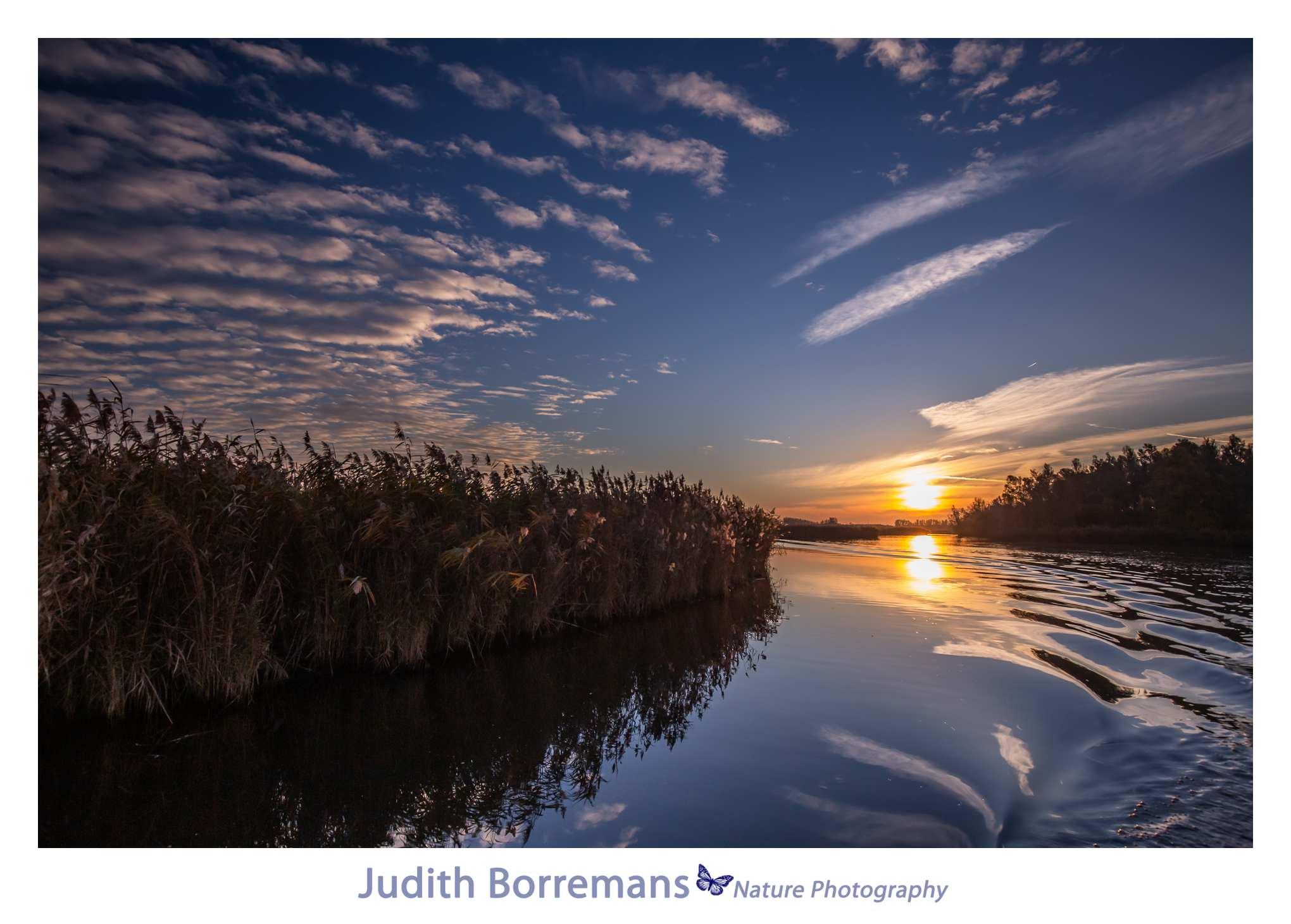Beleef de Biesbosch met de JBN Sloep