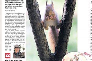 04-01-2016 Dagblad AD