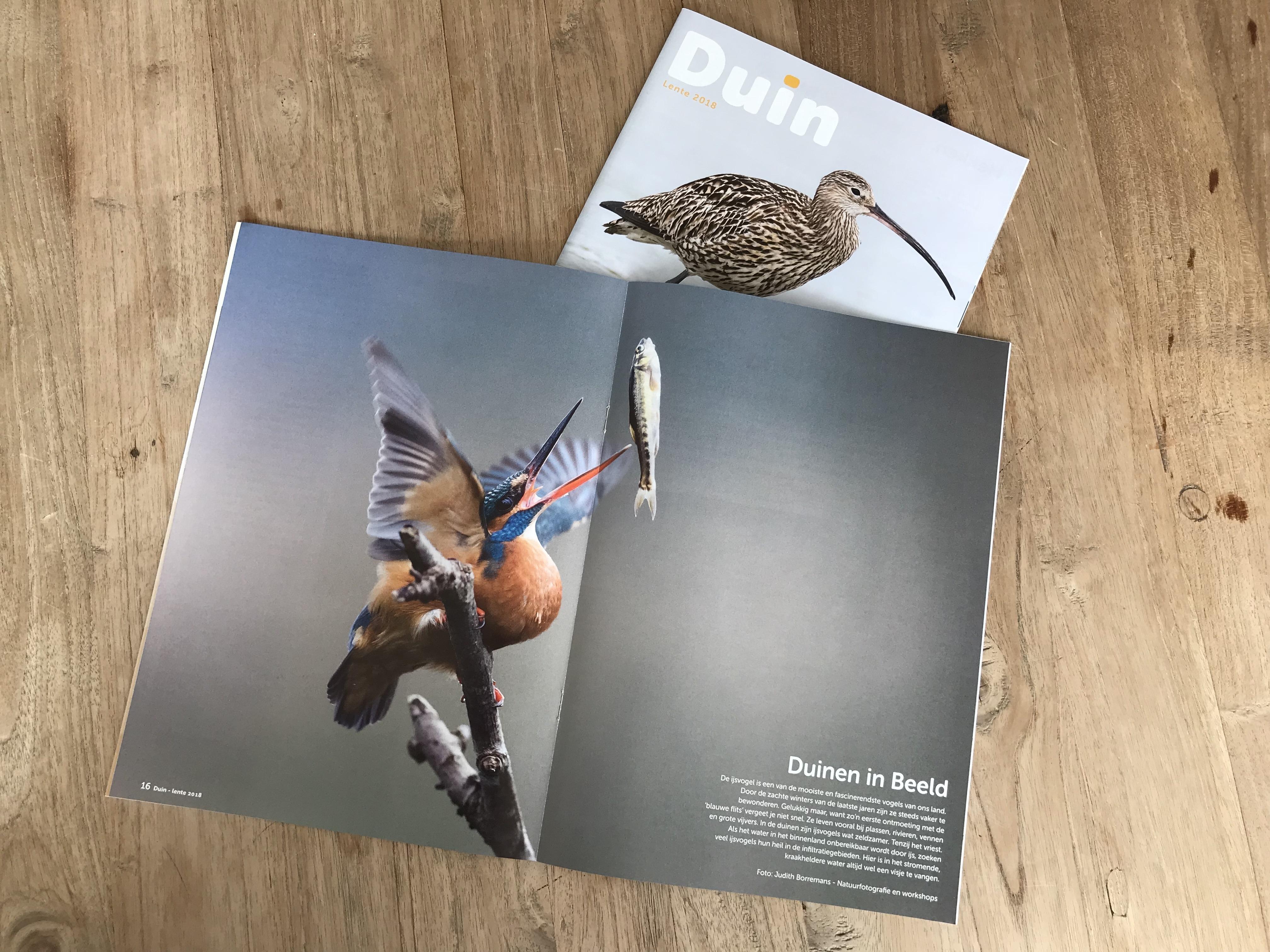 Publicatie Magazine Duin